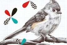 Bird Nerd / Art and products featuring feathered friends.