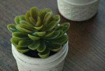 Decorate - Mason Jars / All things mason jar...