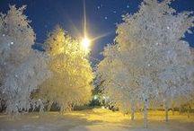 Winter Wonderland-2