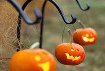 Hallowed Evening / Halloween Decor & Crafts / by Karhma Dent