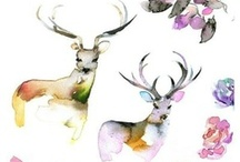 Stags I love / by Lucy Heath @ Capture by Lucy
