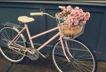 Flower Arrangements Cruisers