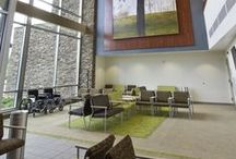 Biophilic Design / Images and articles about biophilic design elements / by Interface Americas