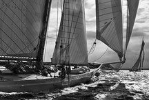 Sailing Away / by WendyAnn