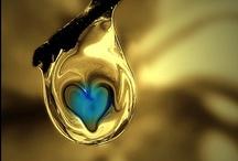 Heart of the matter... / by Terri Fonville