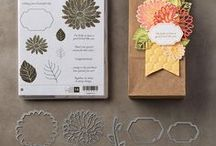 Stampin Up Special Reason stamp set & bundle / Special Reason stamp set and Bundle from the Occasions 2017 Catalog. You can order this in my online store at: https://www.stampinup.com/ecweb/default.aspx?productID=144719&dbwsdemoid=2121697