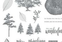 Rooted in Nature Bundle / Rooted in Nature Bundle is a core component to the Nature's Poem Suite featured in the 2018-19 Annual Catalog from Stampin' Up! Click here to order yours today! https://www.stampinup.com/ecweb/productdetails.aspx?productid=148353&dbwsdemoid=2121697