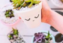 DIY Crafts / DIY crafts and projects for the home!