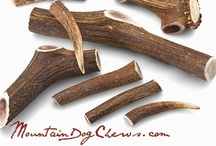 Mountain Dog Chews / We aim to serve you as the most selective purveyor of premium, hand-selected elk antler chews & wholesome natural products for your canine companion!  100% Premium Quality...  100% All Natural...  100% Made in the USA...  100% Mountain Dog!  |  www.MountainDogChews.com  |  Elk antlers are amazing structures!  Impressive in raw aesthetic, as well as with respect to the sheer mass annually regenerated (a **quite perfect** renewable resource, we think!).