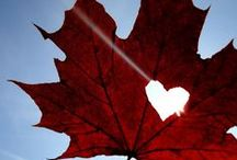 Canada. The true north strong and free. / Our home land.
