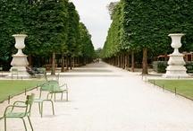 jardins / by Nina Houghton
