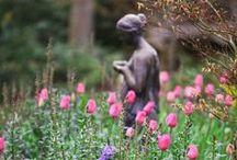 GARDEN ~ Spring Garden / by Deborah