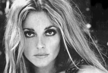 Tribute to Sharon Tate!  / by Michele Lowe