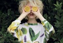 """baron von lemon / """"Lemon tree, very pretty, and the lemon flower is sweet. But the fruit of the poor lemon is impossible to eat.""""---Peter, Paul & Mary song  / by Maiolaine Gisella Poesy"""