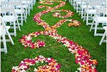 Wedding / by Stacey Tripp