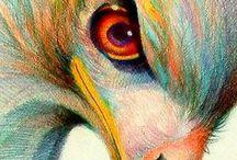 Colored Pencil / by Megan O'Polka
