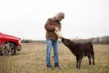 edible FARMS / Find local farmers in Central Texas.