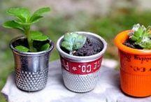 My Fairy Garden Project