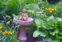 My Shade Garden / Mary Homann's garden through the seasons. A work in progress.