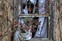 Home {Garden} / by Patricia Brannan