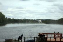 ALASKA FLY-IN & FLY-OUT FISHING CHARTERS! / Fly outs are available from our own dock on Denise Lake!  Welcome to our Backyard.....  www.deniselakelodge.com/alaska-fishing-fly-in.html