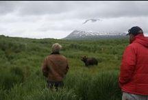 ALASKA BEAR VIEWING!