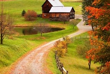 Fall / There is something magical about Fall… the leaves, the food, the clothes… bring on the cozy!!  / by Cynthia Weber Design