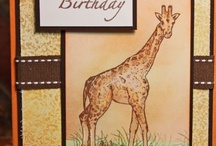 Birthday/Best Wishes Cards / by Cait Russell