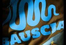 Bauscia / T-shirts, felpe, zaini e accessori del vero Bauscia.  Vai allo Shop: http://bauscia.spreadshirt.it/