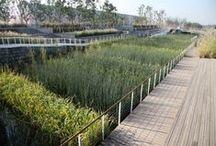 Ecology, Renaturalization, Land Rehabilitation, Environmental Protection & Recycling