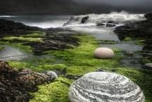 Scotland / by Sparky StTimexx