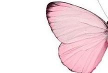 Rosa / Tutto o solo un dettaglio rosa