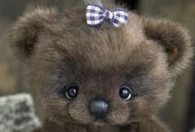 Beary Cute!