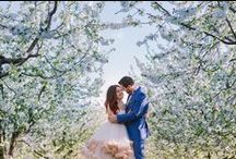 Our Wedding Photography