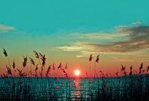 Beautiful & Beautiful Mother Nature  / by Sabrina Heischman