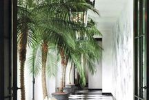 Hallways / by Anna Downes