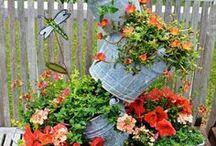 HOME - Flowers & Gardens