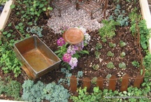 Gardening and Growing / by Traci Knight