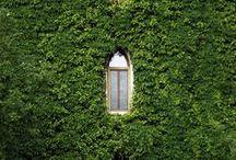 Exterior / by Nina Lindgren