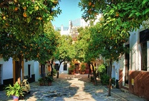 Seville / Best known for flamenco, oranges and a fiery party spirit, the Andalusian capital is situated right in the heartland of typical Spain.