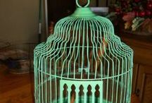 Birdhouse and Cages 7 / by Shirley Parker