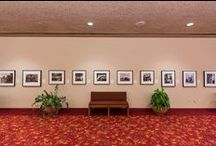 Galleries and Exhibits / A glimpse into the many Galleries and Exhibits at Monona Terrace! / by Monona Terrace Community & Convention Center