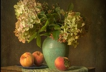 still life / by Molly Watt-stokes