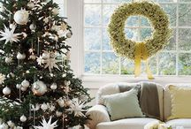 Holiday Cheer / by Christy Coto