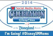 Disney Social Media Moms 2014 / Disney Social Media Moms 2014 - #DisneySMMoms