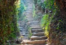 Traveling is... / A journey of a thousand miles must begin with a single step_Lao Tzu