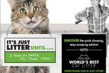 "It's Just Litter Until... / Never settle for ""just litter"" again!   Discover how World's Best Cat Litter harnesses the concentrated power of naturally absorbent corn, so you get a cleaner litter box with no hassles and less litter.   Visit www.itsjustlitteruntil.com to learn more!"