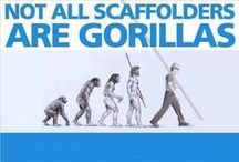 Scaffold / All things scaffolding related - the good, the bad, the ugly and the oh so dangerous!