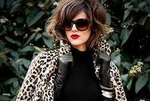 Leopard  / Take a walk on the wild side....