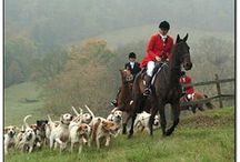 Hunting & Sidesaddle